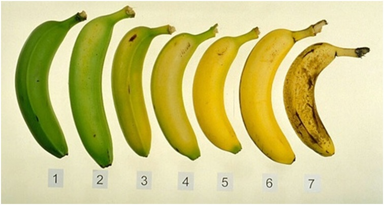 When is the best time to eat a banana