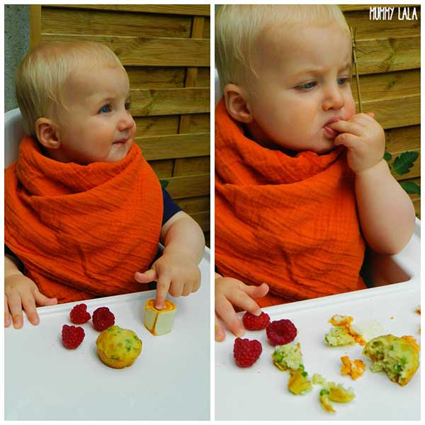 Frozen Baby Led Weaning Food